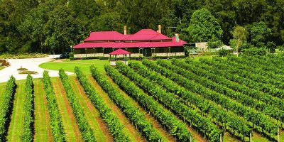 canungra-valley-vineyards.jpg